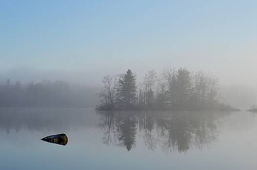 Fog at Dawn on the Pond by Sheila Price
