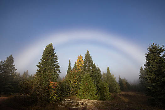 Fog Bow by Jakub Sisak