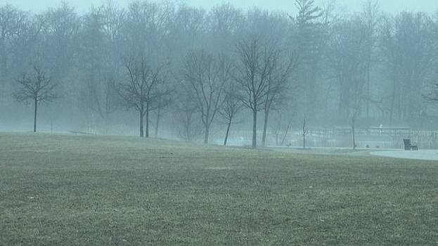 Fog in the Park by Anna Villarreal Garbis