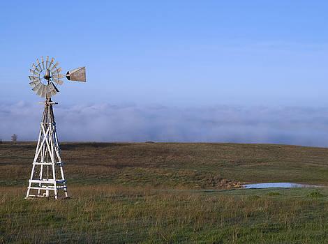Fog in the Valley by Randy Bayne