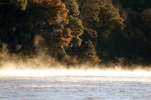 Fog on the Catawba by Greg Simmons