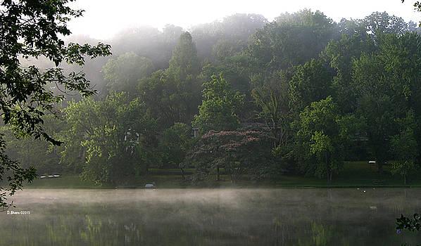 Fog on the lake by Dennis Bivens