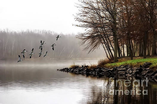 Fog On The Lake by Tom York Images