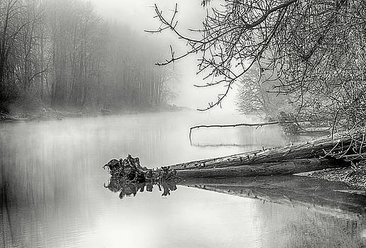 Fog Subdued Waters by Dee Browning