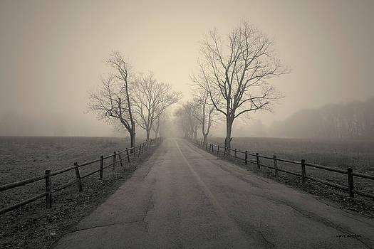 David Gordon - Foggy Afternoon I Toned
