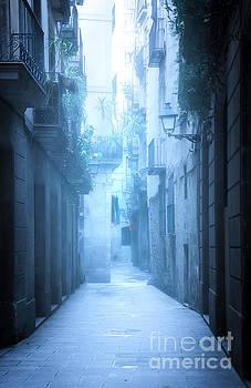 Svetlana Sewell - Foggy Alley