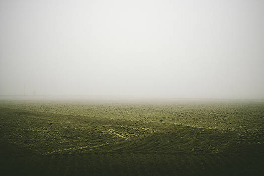 Foggy autumn morning by Cesare Bargiggia