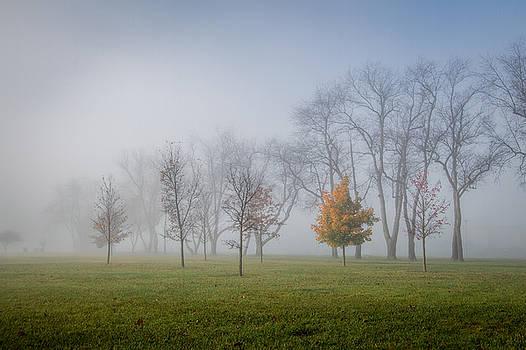 Foggy Autumn Morning by Victoria Winningham