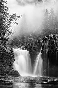Foggy Falls Monochrome by Darren White