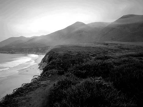 Joyce Dickens - Foggy Hills Of Garapata B and W