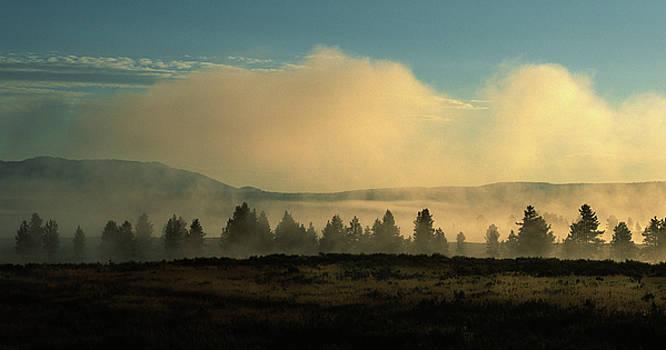 Sandra Bronstein - Foggy Morning in Yellowstone