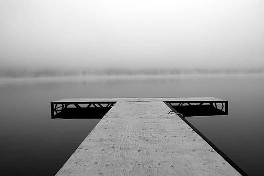 Foggy Morning by Mindy Mcgregor