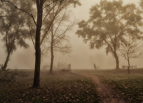 Foggy Morning by Peter Fodor