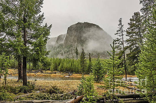 Foggy Mountain by Sue Smith