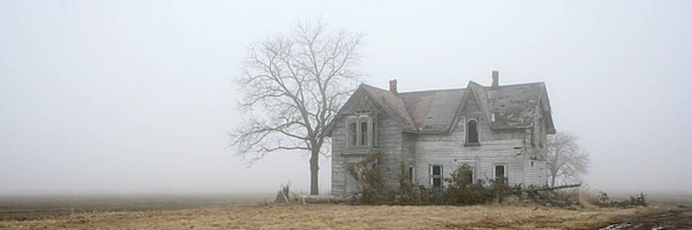 Foggy Panoramic by Kathy Stanczak