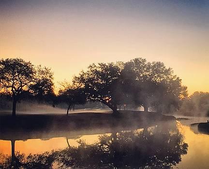 Foggy Sunrise by Victoria Dietz