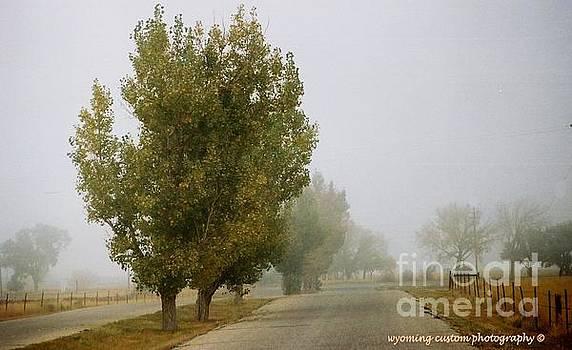 Foggy Trees by Carole Martinez