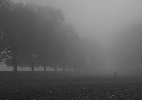 Foggy Westminster by Maj Seda