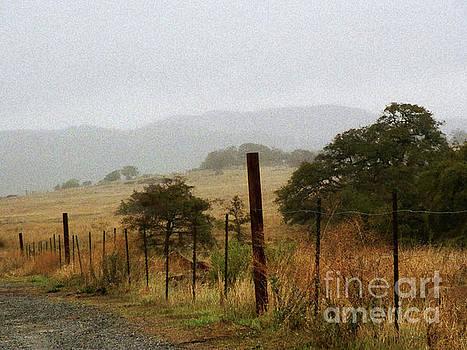 Foggy Wet Morning by Robert Ball