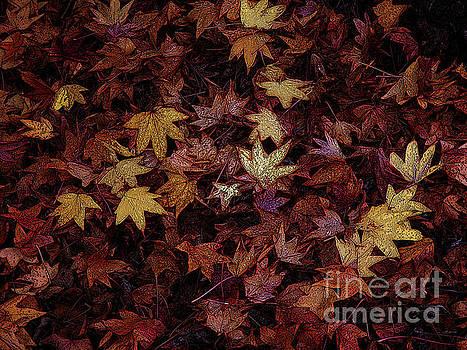 Foil Leaves by Robert Ball