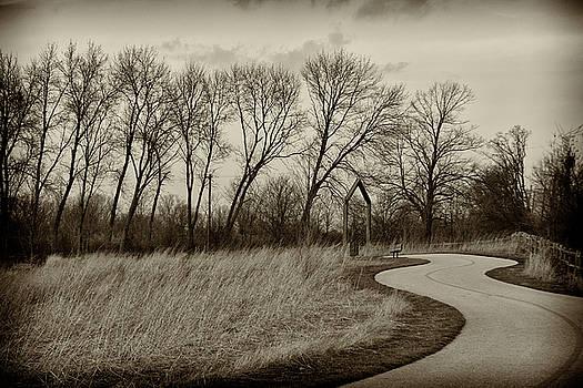Follow the path by Elvira Butler