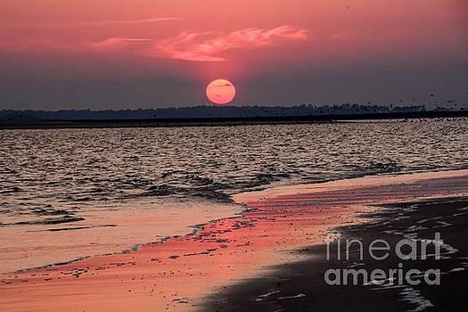 Folly Beach Sunset by Debbie Green