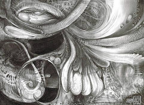 Fomorii Pod by Otto Rapp