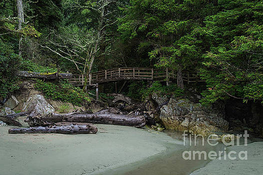 Foot bridge at Tonquin Beach by Carrie Cole