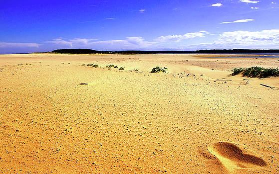 Foot Print In The Sand by Miroslava Jurcik