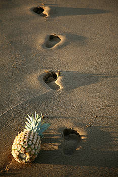 Michael Ledray - foot prints in the sands of time