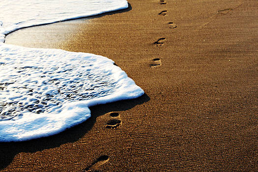 Footprints in the Sand by Magdalena Green