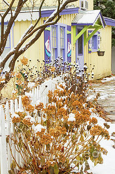 Ford Cottage Side Garden by Marilyn Cornwell