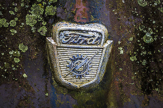 Debra and Dave Vanderlaan - Ford Emblem