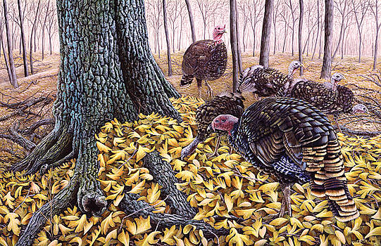 Forest Foragers - Wild Turkeys by Craig Carlson