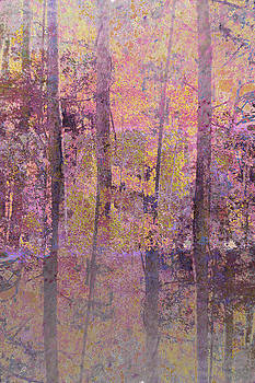 Forest Morning Light Mauve by Suzanne Powers