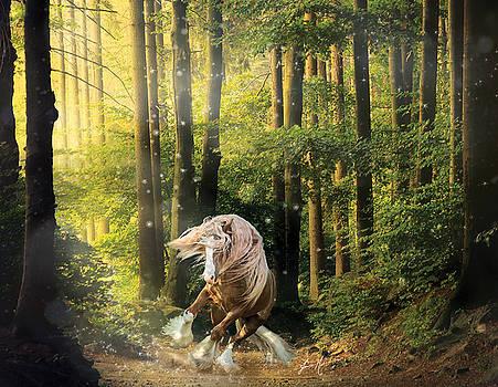 Forest Stallion by Jamie Mammano