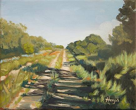 Forgotten Road by Donna Hays