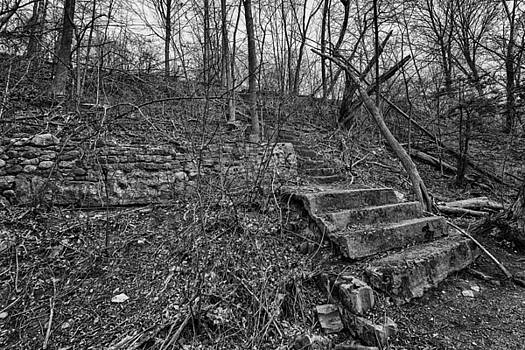 Forgotten Stairs by CJ Schmit