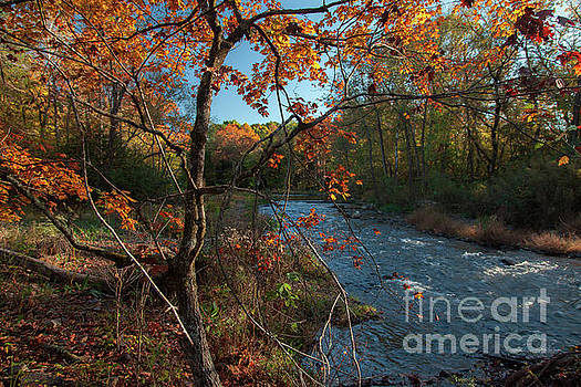 Fork River in Fall by Iris Greenwell
