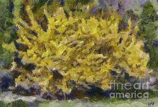 Forsythia In Bloom by Dragica Micki Fortuna