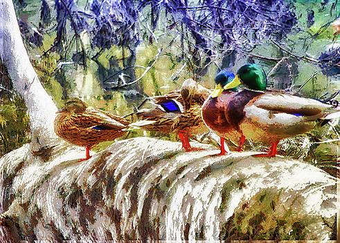 Four Ducks On A Log by Joseph Hollingsworth