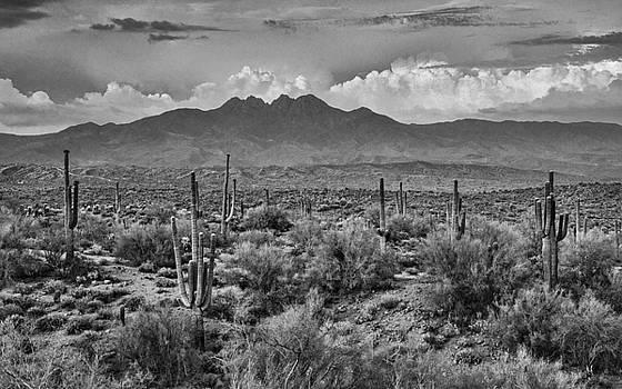 Saija  Lehtonen - Four Peaks in Black and White
