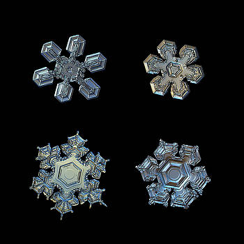 Four snowflakes on black 2 by Alexey Kljatov