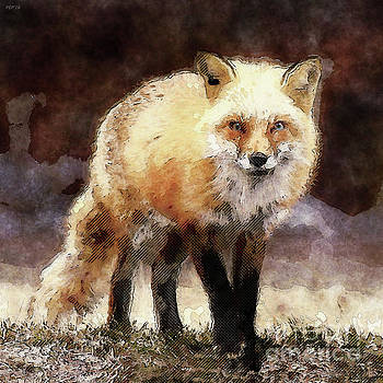 Fox On The Move by Phil Perkins