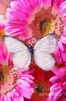 Fragmented White Butterfly And Pink Fluers by Catherine Lott