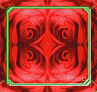 Framed Red  Rose Abstract by Linda Phelps