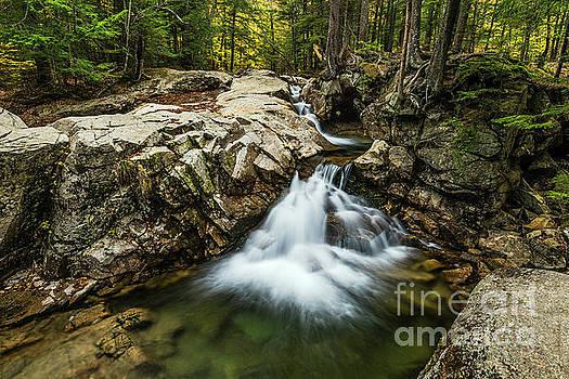 Franconia Notch Waterfall by John Greim