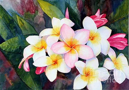 Frangipani Blossoms by Ursula Reeb