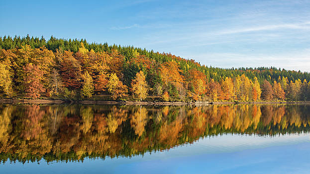 Frankenteich, Harz by Andreas Levi
