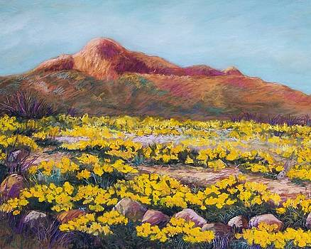 Franklin Poppies by Candy Mayer